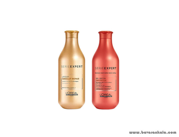 L'Oreal Hair Shampoo 300 ml inforcer model with L'Oreal Hair Shampoo 300 ml Absolut Repair model